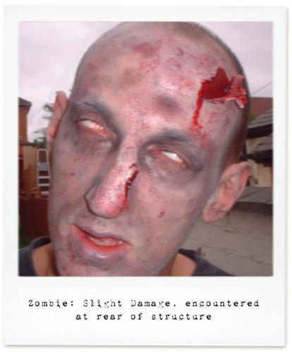 zombie_garden1.jpg